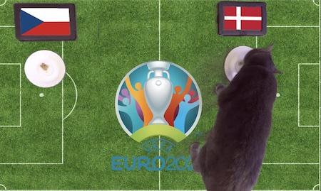 Mèo tiên tri dự đoán kết quả bóng đá CH Séc vs Đan Mạch