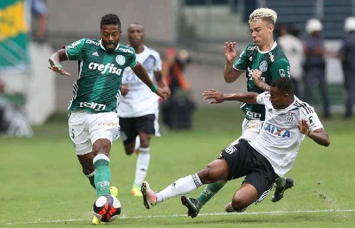 Kết quả Palmeiras vs Tigres, video highlight cúp C1 Nam Mỹ 2020 hôm nay
